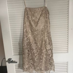 Adrianna Papell Evening Lace Dress